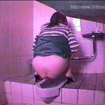 後からトイレ盗撮 熟女から若い女性まで大小排泄シーン