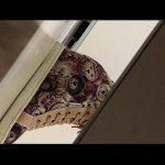 横からトイレ盗撮 可愛いクマの靴履いた女の子の放尿シーン