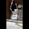 【洋式トイレ盗撮】白長袖シャツお姉さんがスマホいじりながら放尿