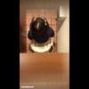 【洋式トイレ盗撮】真上からつむじが見えるデニジャケ女の子の放尿タイム